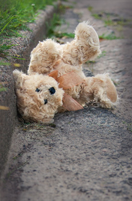 Teddy Bear in Gutter